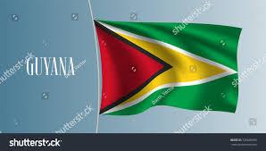 Guyana Flag Guyana Waving Flag Vector Illustration Green Stock Vector