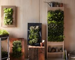download diy indoor herb garden monstermathclub com