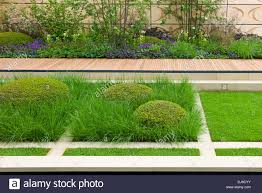 contemporary garden with topiary box and grasses the brewin