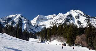 ski resort info reviews and guides skiing and snowboard