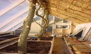 biointensive passive solar straw bale greenhouse u2013 investmentwatch