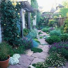 Landscaping Images 143 Best Xeriscape Landscaping Images On Pinterest Gardens