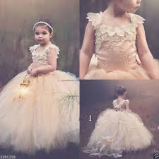 vintage communion dresses vintage flower girl dresses chagne lace tulle communion
