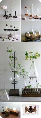 25 unique science room decor ideas on science room