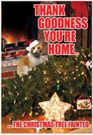 amazon com avanti christmas cards too many treats 10 count