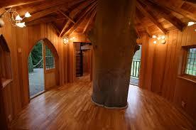 28 treehouse inside pics photos treehouse inside the house