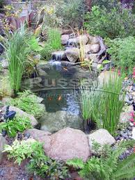 Backyard Fish Pond Kits Ahi Series 6 U0027 X 6 U0027 Ultimate Water Garden Pond Kit Is Easy Clean