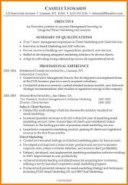 Summary Statement In Resume 14 Summary Statement Resume Examples Foot Volley Mania