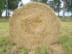 How To Make A Hay Bail Blind A Hay Bale Blind Does Not Have To Cost A Lot Of Money If You Know