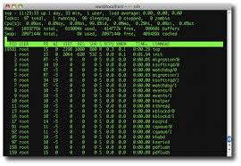tutorial linux sort how to use the linux top command alvinalexander com