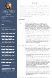 Senior Logistic Management Resume Vp by Senior Vice President Resume Samples Visualcv Resume Samples