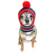 new england patriots knit dog hat with same day shipping baxterboo