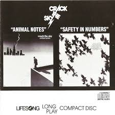 Plain And Fancy Plain And Fancy The Sky Animal Notes Safety ιn Numbers