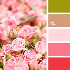pink color shades color palette 2726 color palette ideas