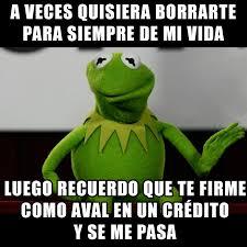 Memes Rana Rene - dice la rana rene on spanish memes memes and memes humor