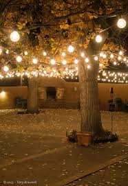 custom length christmas light strings 103 best patio lights images on pinterest backyard patio garden