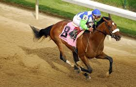Horse With American Flag Ten Years Later Remembering Barbaro And His Legacy Baltimore Sun
