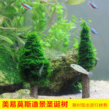 new arrival easyweld etb christmas tree moss plants jungle in
