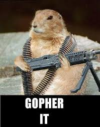 Gopher Meme - image 75145 gopher it know your meme