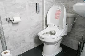 the actual perform of the bathroom chair home improvement ideas