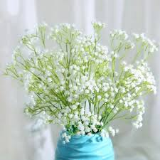 Bulk Baby S Breath 100 Bulk Baby S Breath Eustomas My Big Day On A Dime Silver