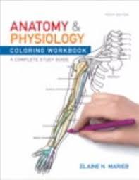 Human Anatomy And Physiology By Elaine Marieb Pdf Anatomy And Physiology Coloring Workbook 10th Edition Textbook