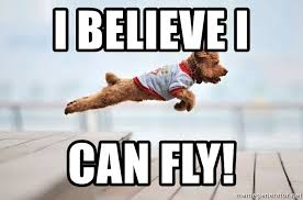 I Believe I Can Fly Meme - i believe i can fly flying dog meme generator