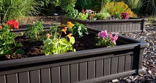 plant stunning design how to make a raised vegetable garden best