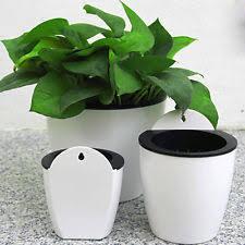 3 pk flower pots plastic hanging decorative wall plant holder