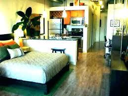 Dividers For Studio Apartments Apartment Room Dividers Studio