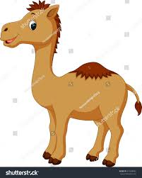 cute camel cartoon stock vector 510838804 shutterstock