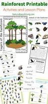 best 20 rainforest animals ideas on pinterest brazilian