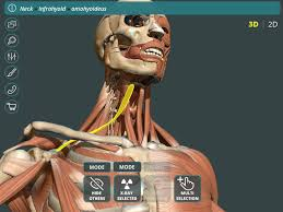 A Anatomy Visual Anatomy 3d Human Android Apps On Google Play