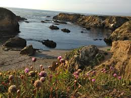 glass beach map and directions find sea glass