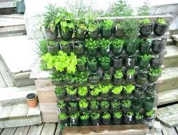 Planter Gardening Ideas Porch Vegetable Garden Ideas Container Potted Vegetable Garden