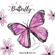 beautiful background with purple butterfly and flowers vector