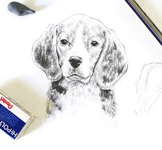 drawing realistic animals how to draw a dog