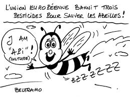 Chambre Ré Ionale Des Comptes Paca Economie La Gazette Hebdomadaire Petites Affiches Des Alpes