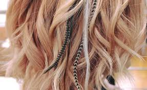hair feathers feather hair extensions all you need to about this year s