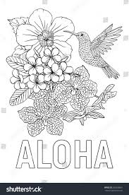aloha coloring book page hummingbird hibiscus stock vector