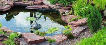 How To Build A Fish Pond In Your Backyard How To Build Fish Ponds In Your Backyard Outdoor Goods