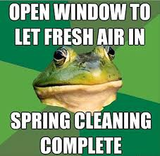 Bachelor Frog Memes - the best of bachelor frog meme 28 pics