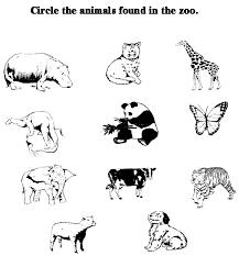 pet and wild animals worksheet for kindergarten free worksheets