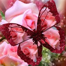 pink butterfly roses marykay com melanieluttrell free pink