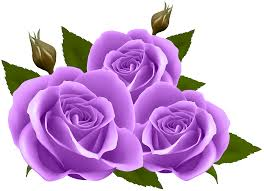 purple roses purple roses png clip image gallery yopriceville high