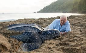Seeking Planet Series Blue Planet Series Set To Fuel A Boom In Eco Tourism
