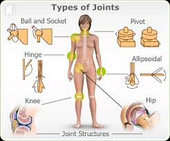 pain body joint paint symptom information 34 menopause symptoms com