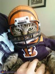 Cincinnati Bengals Halloween Costume Bengals Mascot Costume Cat Animal Adorable Animals
