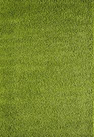 Green Modern Rug Green Shaggy Rug Warm Soft Carpet Fluffy Modern Style Contemporary