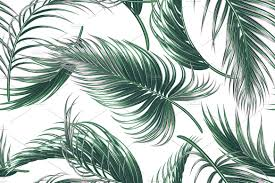 tropical palm leaves vector pattern patterns creative market